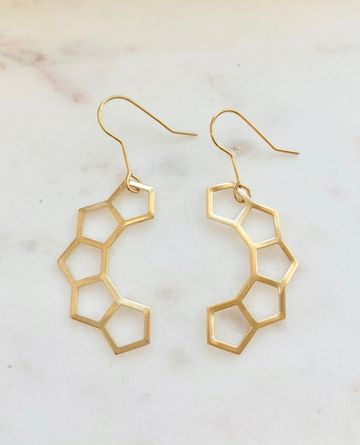 Climb earrings