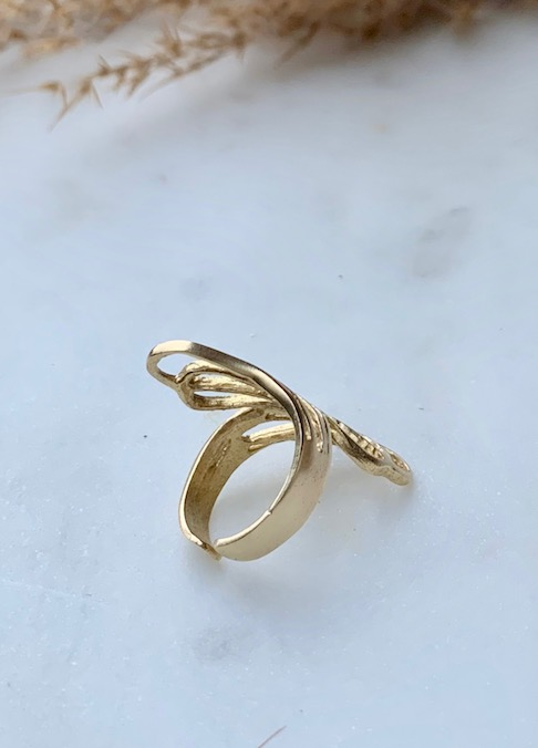 Wings ring